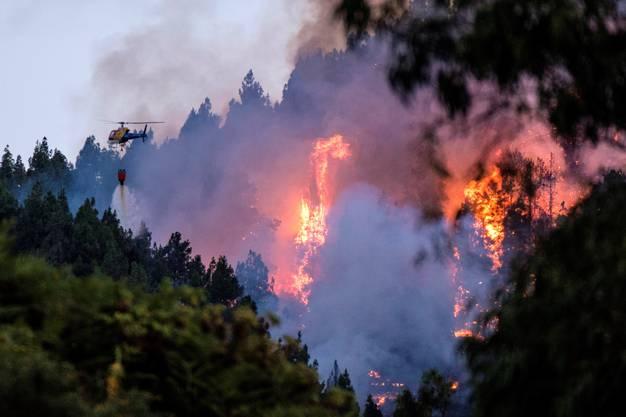 Die Flammen schlügen bis zu 50 Meter hoch, schrieben spanische Medien am Montag unter Berufung auf die Behörden.