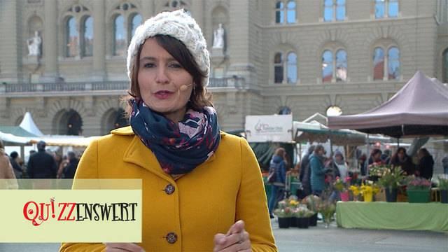 Quizzenswert auf dem Markt Bern