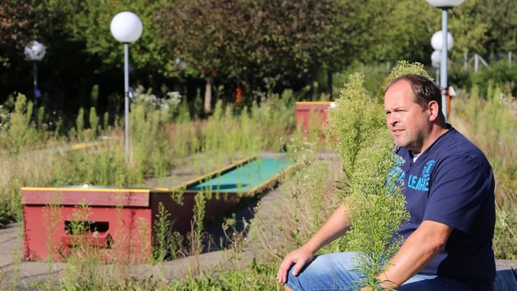 Peter Arber kann als Präsident des Minigolfclubs Olten die Entwicklung um den mittlerweile unkrautgeplagten Minigolfpark schwer nachvollziehen.