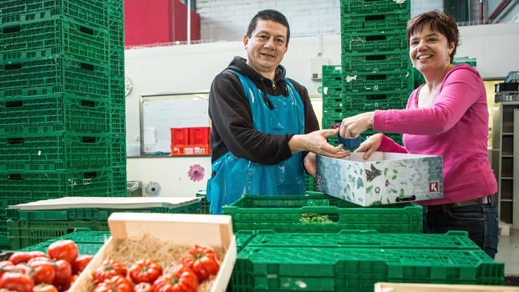 Der Ecuadorianer Pedro Zambrano ist froh darüber, dass Eveline Jungen, Inhaberin der Dietiker Jeune Primeur AG, ihm einen Arbeitsversuch ermöglichte.
