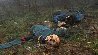Das Massaker von Sebrenica