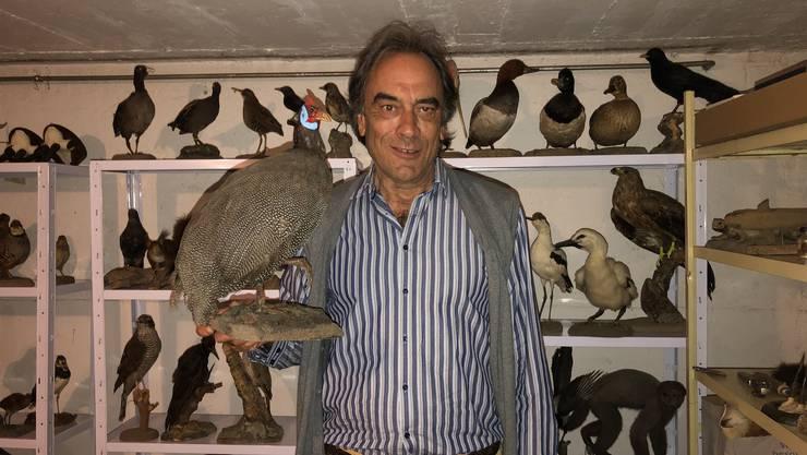 In seinem Keller hat Tierpräparator Hans-Peter Walther eine kleine Sammlung seiner Lieblingsstücke.
