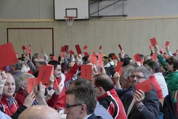 Abstimmung der Delegierten