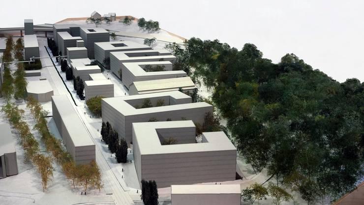Ein Modell zeigt den Gestaltungsplan «Green City» in Zurich mit Blick in Richtung Norden. Auf dessen Grundlage soll das Sihlpapier-Areal Manegg in Zuerich umgestaltet werden.