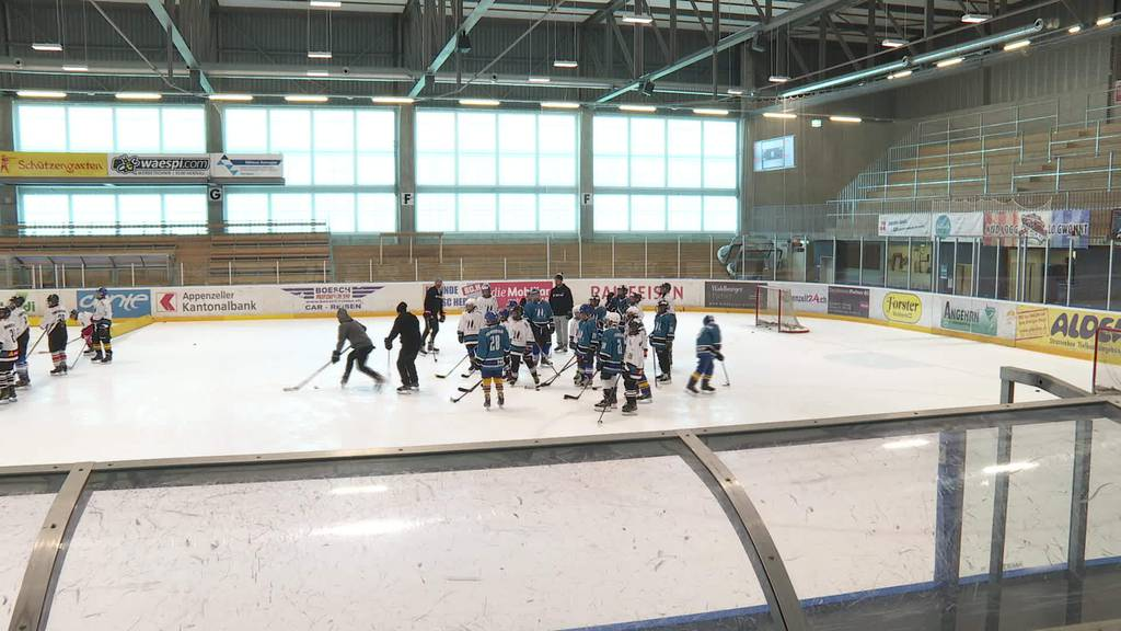 Timo-Time: Timo Meier trainiert in Herisau mit Nachwuchs