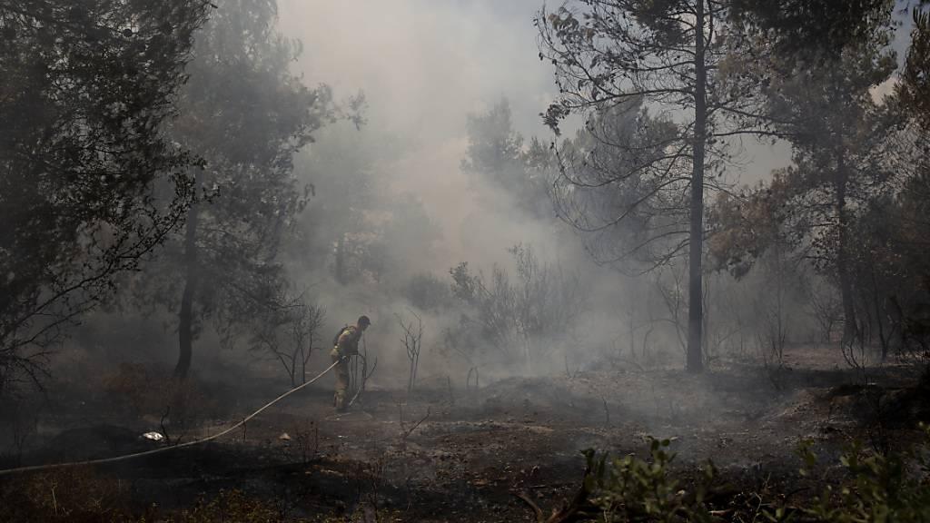 Kampf gegen das Feuer am Stadtrand von Jerusalem. Foto: Maya Alleruzzo/AP/dpa