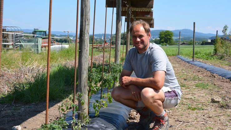 Guido Weber vom Rosenhof auf seinem Feld in Spreitenbach.