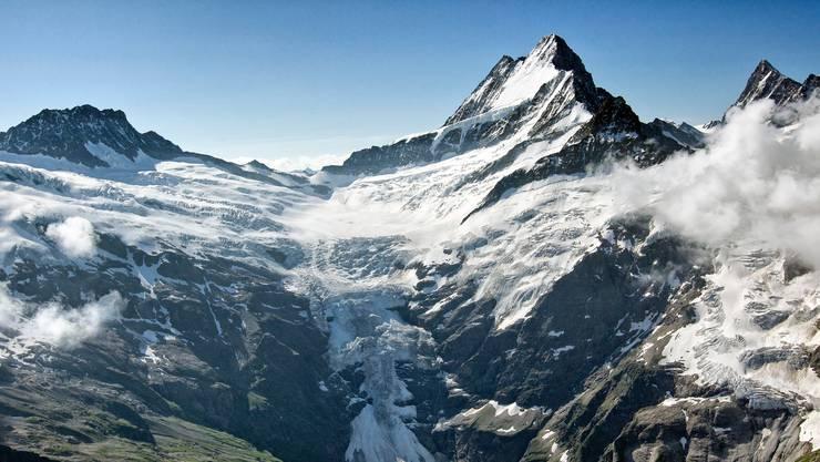 Der tödliche Bergunfall ereignete sich am Schreckhorn.