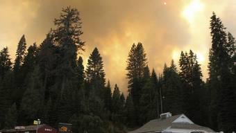 Rauch nahe dem Yosemite-Nationalpark - ein Waldbrand blockiert derzeit einen der Zugänge zum Park. (Archiv)