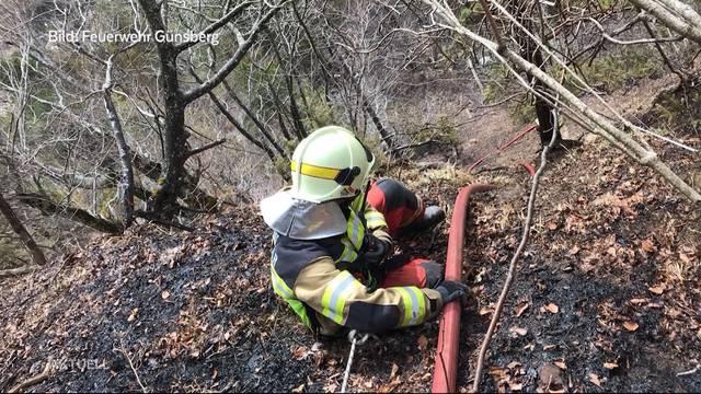 Der Wald bei Günsberg brennt weiter