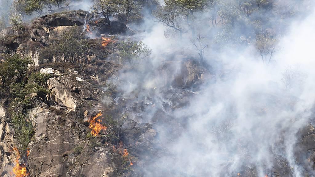 Tessin: Waldbrand zwischen Bedano und Arosio
