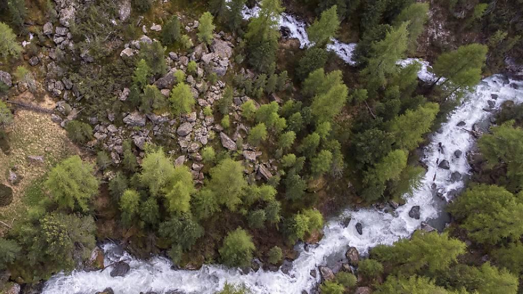 Der Bergbach Ova Chamuera in der Bündner Gemeinde La Punt Chamues-ch ist nahezu unberührt. Für diese Natürlichkeit wurde er mit dem Label «Gewässerperle Plus» ausgezeichnet.