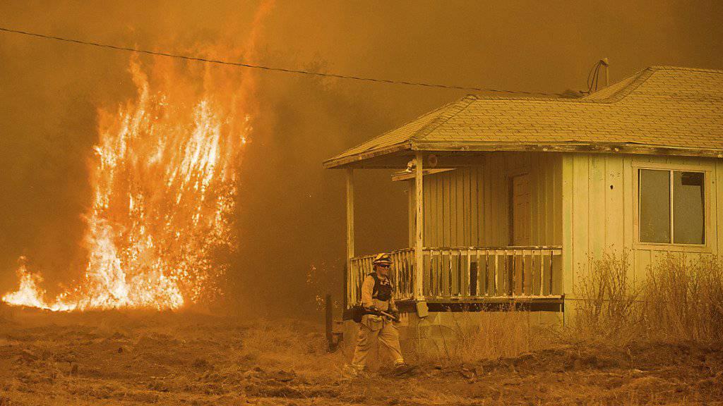 Waldbrände haben in der Nähe des Yosemite-Nationalparks Dutzende Wohnhäuser zerstört - hier bei Mariposa, Kalifornien.