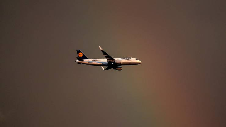 Geboren in den Lüften - so erging es einem Jungen auf dem Flug von Kolumbien nach Deutschland an Bord einer Lufthansa-Maschine.