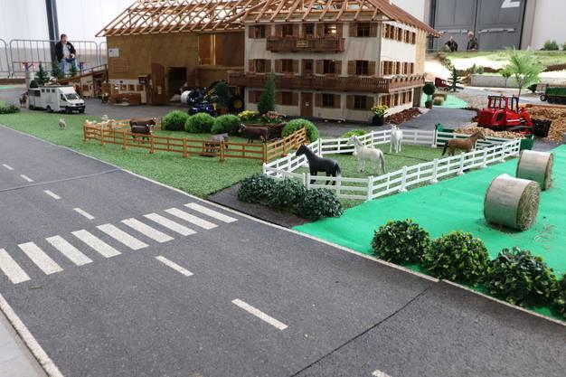 In Effingen wird 2019 der schweizweit grösste Parcours für Agromodelle organisiert.