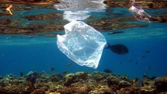 Ein Plastiksack treibt über einem Korallenriff in Ägypten