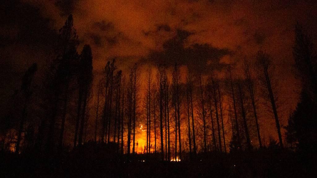 HANDOUT - Flammen brennen im Wald in der argentinischen Region Patagonien. Die genaue Ursache für die Brände war zunächst unklar. Laut Medienberichten wurden bisher 2000 Hektar Wald und 250 Häuser zerstört. Foto: Matias Garay/Greenpeace Argentina/dpa - ACHTUNG: Nur zur redaktionellen Verwendung und nur mit vollständiger Nennung des vorstehenden Credits