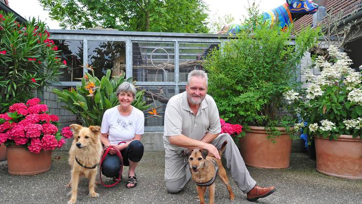 Die Lostorfer Beatrice und Alfred Markstahler mit zwei Hunden aus dem Tierdörfli.