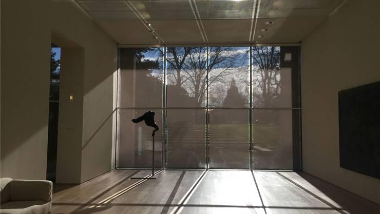 In diesem Lieblingsraum zeigt sich, wie Kunst, Natur und Architektur in der Fondation Beyeler kongenial zusammenspielen. Susanna Petrin
