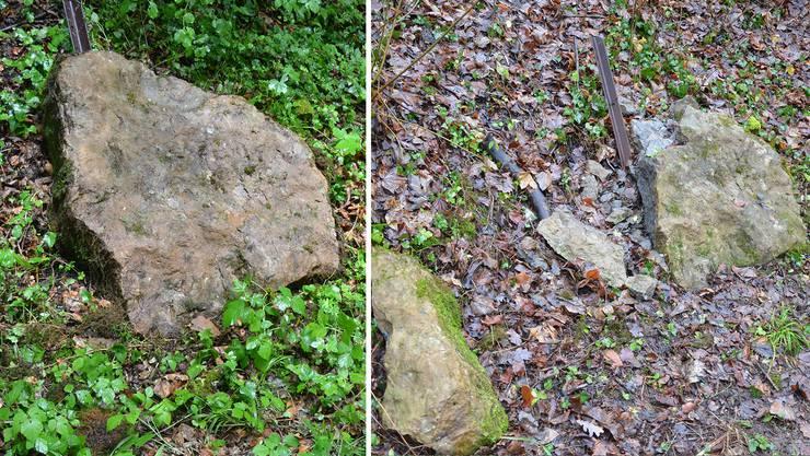 Eine Gesteinsplatte mit wertvollen Fossilien auf dem Weg zur Ehrendinger Gipsgrube wurde zertrümmert aufgefunden.
