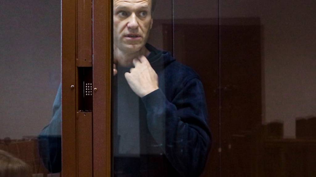 ARCHIV - Der russische Oppositionsaktivist Alexej Nawalny erscheint zu einer Anhörung. Foto: Uncredited/Babuskinsky District Court/AP/dpa - ACHTUNG: Nur zur redaktionellen Verwendung und nur mit vollständiger Nennung des vorstehenden Credits