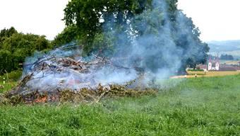 Feuerbrand breitet sich nur dann nicht weiter aus, wenn befallene Pflanzen, wie hier oberhalb von Muri, rigoros vernichtet werden.  zvg Feuerbrand breitet sich nur dann nicht weiter aus, wenn befallene Pflanzen, wie hier oberhalb von Muri, rigoros vernichtet werden.  zvg