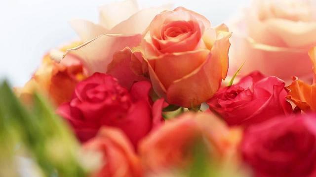 Blumen für die Liebsten