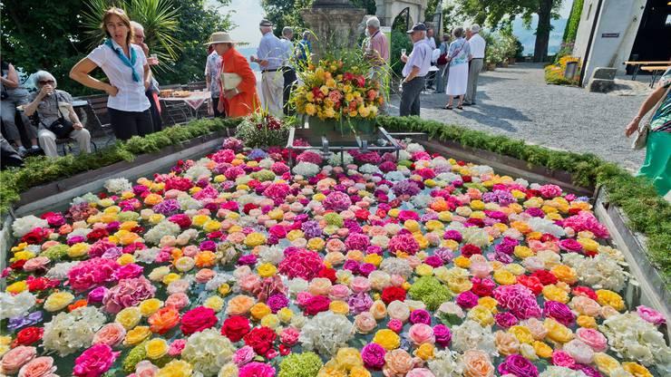 Der Brunnen im Schlossgarten wurde zu Ehren der Rosenfreunde prächtigt dekoriert.