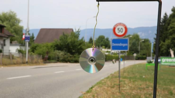CD's reflektieren das Licht der Fahrzeuge - so zögert das Wild vor dem Überqueren der Strasse.