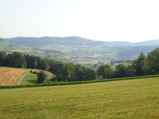 2012 Laufenburg-Kirchspiel 007.jpg