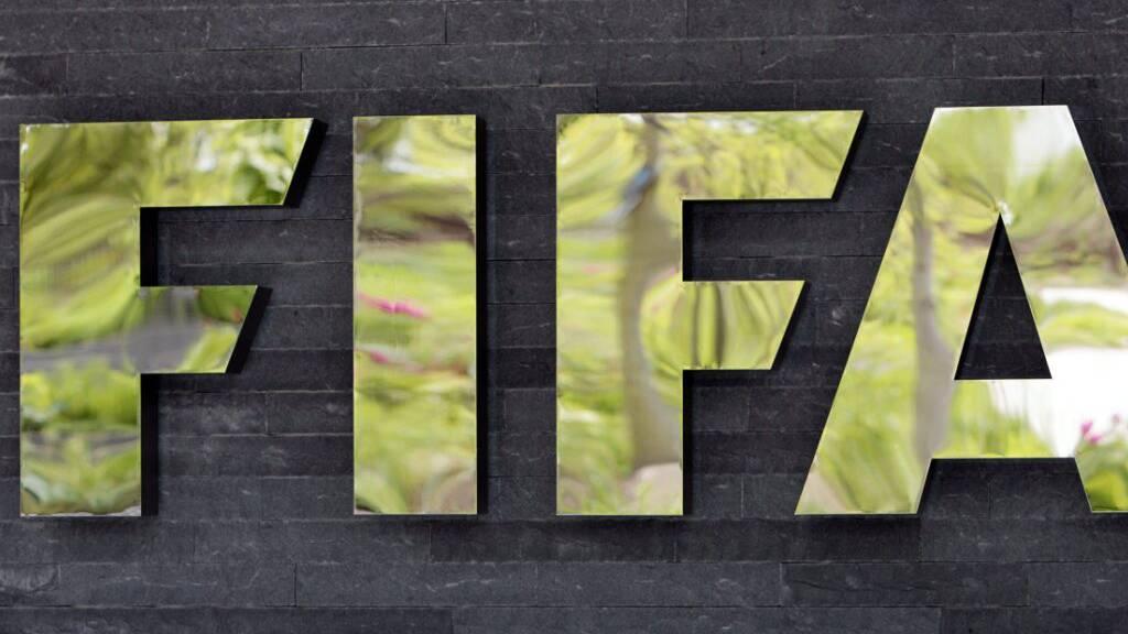 Positives Fan-Feedback für WM alle zwei Jahre