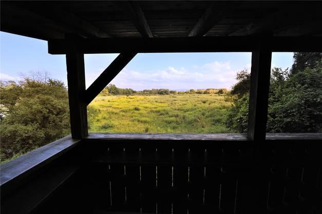 Einer von sieben Beobachtungsständen im Naturschutzgebiet.