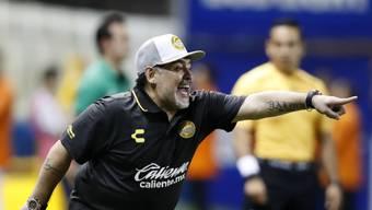 Diego Maradona feierte in Mexiko einen Auftaktsieg als Coach beim Zweitligisten Dorados de Sinaloa
