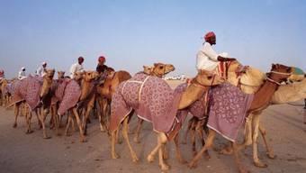 Katar, im Nordosten des Persischen Golfes, verfügt über die drittgrössten bekannten Erdgas-Reserven eines einzigen Landes und ist weltweit grösster Exporteur von verflüssigtem Erdgas