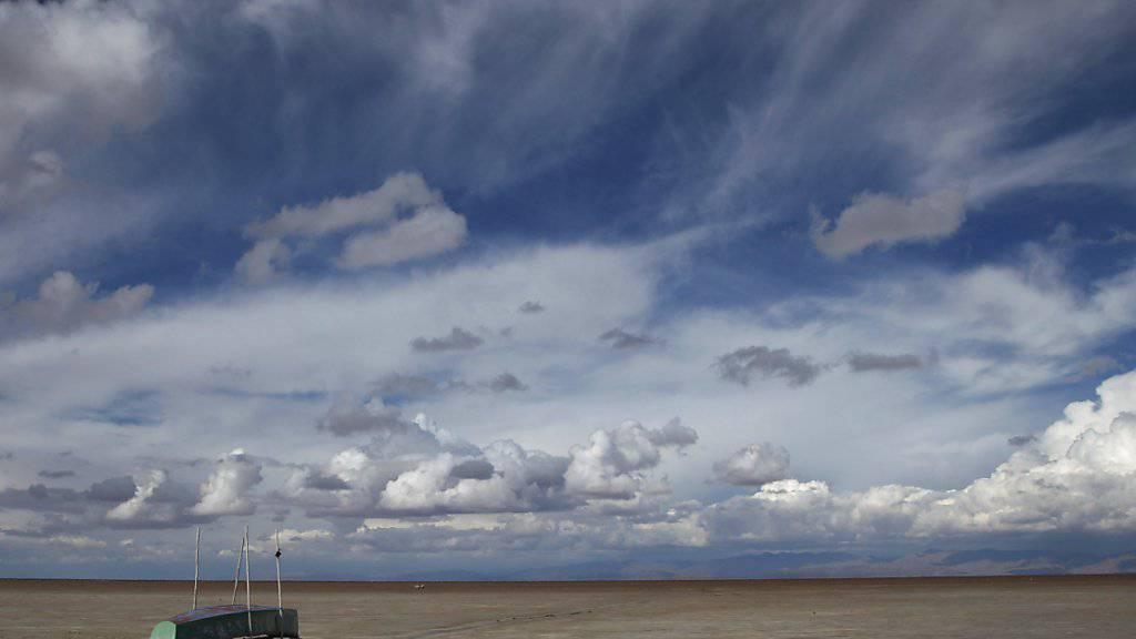 Das Klimaphänomen El Niño sorgt unter anderem für ausgedehnte Dürren (Archiv)