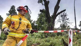 Die Genfer Feuerwehr hatte am Samstagnachmittag alle Hände voll zu tun - der Sturm hatte ganze Arbeit geleistet.