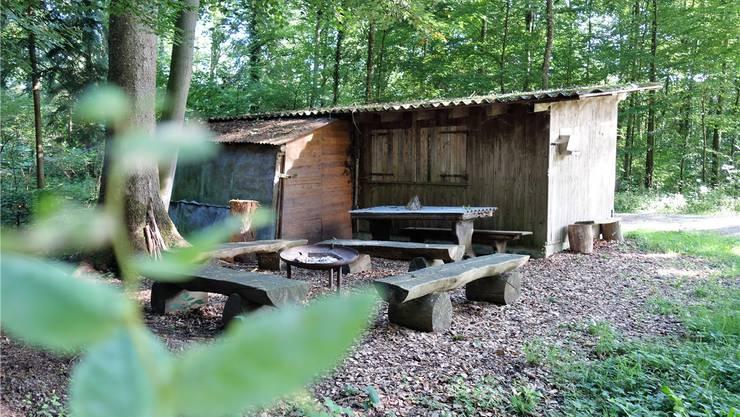 Illegal? Diese alte Holzerhütte steht schon lange im Murianer Wald. Bilder: Eddy Schambron