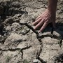 Trockenheit im Sommer ist in der Schweiz immer häufiger. (Symbolbild)