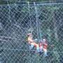 Arbeiter stellen das Steinschlagschutznetz am Axen in Stand.