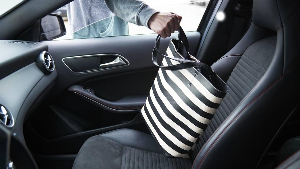 Über 40 Fälle von Diebstählen aus Autos geklärt
