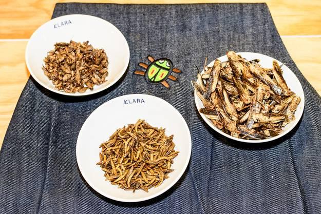Jeder fünfte Gast im «Klara» an der Clarastrasse bestellt bei ihm ein Gericht mit Insekten.