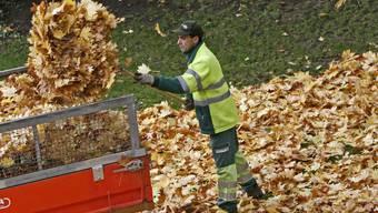 Ein Arbeiter von Grünn Stadt Zürich lädt im Park am Zürichhorn Laub auf seinen Karren.
