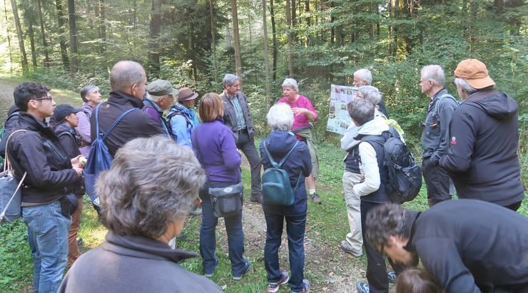 Faszinierende Lebewesen im und am Totholz erklärt Christa Glauser an einem sehr vielfätigen Flyer