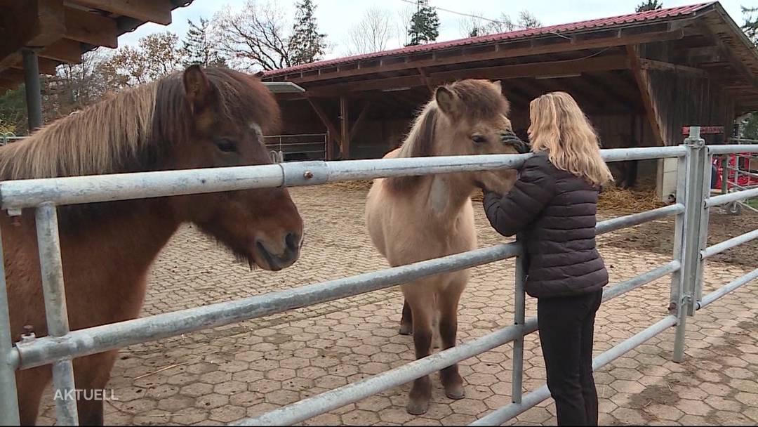 Überwältigende Anteilnahme an Pferde-Drama