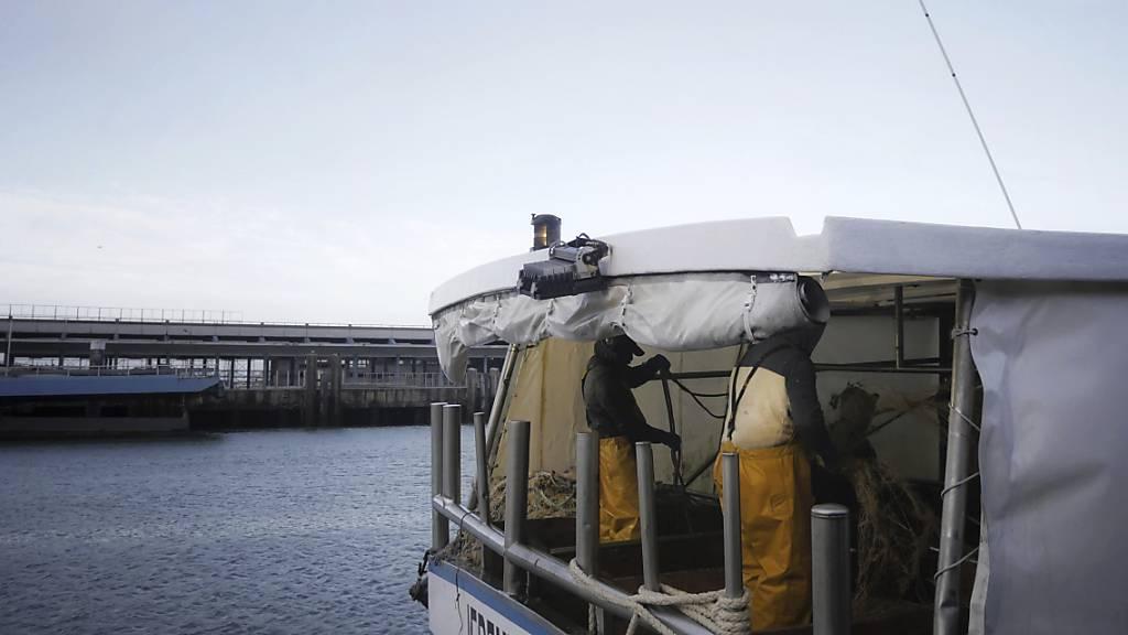 Britische Fischer: Johnson hat uns betrogen