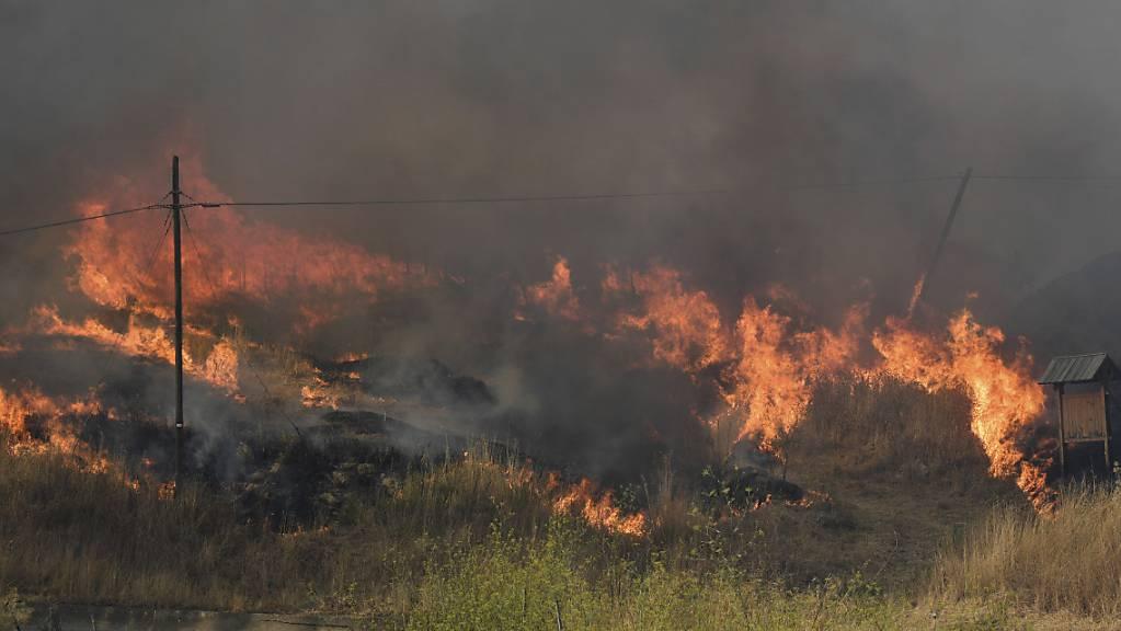 Flammen breiten sich in der Gemeinde Blufi aus. Sizilien, Sardinien, Kalabrien und auch Mittelitalien wurden von Waldbränden schwer getroffen.