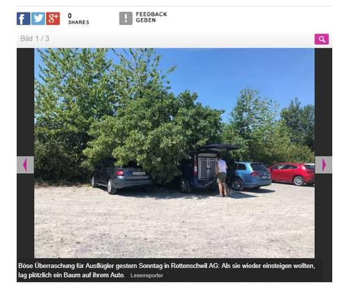 Die Autos standen am Ufer der Reuss.