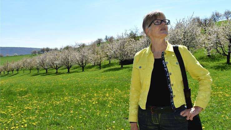 Regine Leutwyler blickt hoch in einen Kirschbaum, von wo das Summen der Bienen zu hören ist.