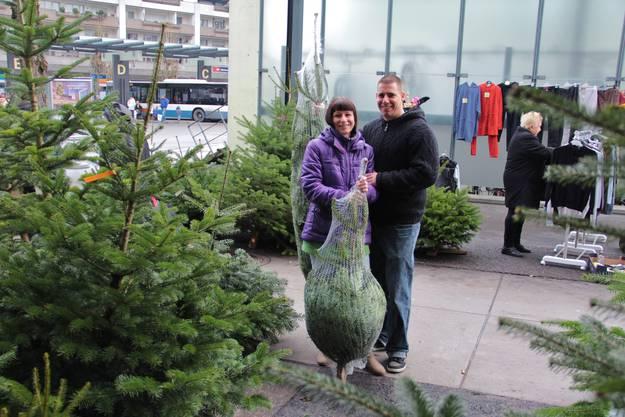 Verkauf von Christbäumen in Dietikon