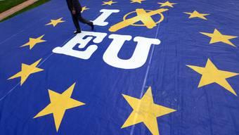 EU-Bürger sind an die Urne gerufen.